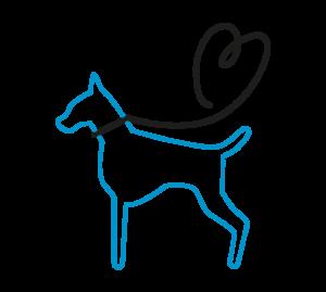 Süsel Seeparx - Anleinpflicht für Hunde - Zeichnung