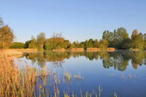 Blick über den Süsel Seeparx See und das gegenüberliegende im Frühling mit grün austreibenden Bäumen im Sonnenlicht vo am blauen Himmel
